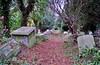 Walking On Their Graves (standhisround) Tags: burialground harrowonthehill middlesex london northwestlondon tombs graveyard england uk stmarys forest trees