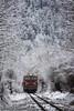 Rhodope railway, Bulgaria (Nikos Kantiris) Tags: bdz snow trees rails kantiris railway railroad καντηρησ χιονια δενδρα ραγεσ τρενα τραινα σιδηροδρομοσ βουλγαρια bulgaria бдж влакове сняг българия родопската теснолинейка