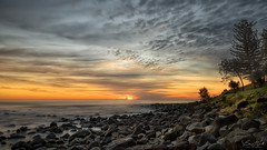 Here comes the sun (BAN - photography) Tags: sunrise daybreak d810 burleighheads seascape norfolkpines park longexposure driftwood shells beach shore