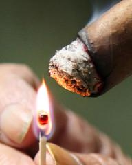 Sticks - Macro Mondays 12-10-17 (MelenaMe) Tags: stick macromondays flame match cigar tobacco smoke tobaccoleaf leaf smoking lighting igniting burned burning