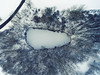 Ice Cube (Matt Champlin) Tags: winter cold aerial photography ice snow snowstorm flx fingerlakes skaneateles ny christmas white drone drones dji amazing