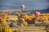 balloons landing in valley (maryannenelson) Tags: colorado durango fall balloonrally hotairballoons autumn landscape sky