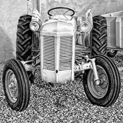 Ferguson front - - Frontal Ford Ferguson (erlingsi) Tags: ferguson ford gråtass flø sliteren tractor traktor bnw blackandwhite sq