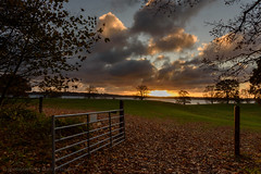 The gate to autumn is wide open, Nødebo, Denmark (Mads71) Tags: esrumsø solopgang