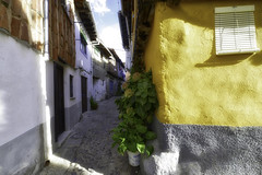 Avenida de las hortensias - Avenue of the hydrangeas (Cembe Héctor) Tags: pueblos bonito españa spain villages nice