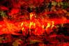 DREAM OF A MIDNIGHT AUTUMN. (Viktor Manuel 990.) Tags: dream sueño otoño autumn horses caballos night noche digitalart artedigital querétaro méxico victormanuelgómezg textures texturas herbs