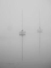 Yacht's in the Fog (Jeff_Warner) Tags: oly40150pro olyem1mkii fog morninglight geelong