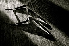 Glasses Shadow (Bo Dudas) Tags: shadow glasses wood table black bw blackwhite blackandwhite white glass read monochrome monotone mono macromonday rim readers