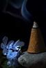 Macro Monday/StoneRhymingZone (Betweendunes) Tags: macromonday stonerhymingzone flower incense smoke sunlit blue