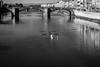 Florence aviron (David-Charles Arrivé1) Tags: fuji x100f nb florence toscane italie