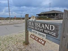 sign Pea Island NWR ncwetlands KG (1) (ncwetlands.org) Tags: northcarolina barrierisland ncwetland ncwetlands migratorybirds wildliferefuge nestinghabitat tidalmarsh overlook