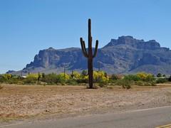 Apache Junction, Arizona (Jasperdo) Tags: apachejunction arizona roadtrip superstitionmountains mountain desert desertscenery landscape scenery saguaro cactus