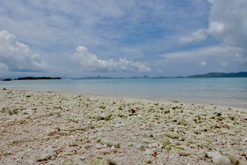 pink beach in paradise