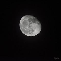MOON (regis.muno) Tags: nikond7000 tamron150600 moon lune planete planet hoerdt alsace france