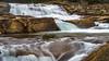 Whitewater Cascade6 (danngrider) Tags: tuolumnemeadows tuolumneriver yosemitenationalpark yosemite waterwheelfalls californiafalls lecontecalls tuolumnefalls glenaulinfalls