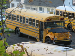 First Student #80 (ThoseGuys119) Tags: firststudentinc wallkillny schoolbus thomasbuilt icce freightliner fs65 ce