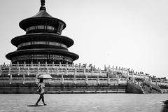 Sunny June (Go-tea 郭天) Tags: beijing temple heaven pavillon wood wodden ancient construction symbol spirituality history historical historic tourist touristic candid walk walking alone lonely visitor visiting visit tour lady woman young umbrella sun sunny shade shadow stairs movement street urban city outside outdoor people bw bnw black white blackwhite blackandwhite monochrome naturallight natural light asia asian china chinese canon eos 100d 24mm prime old