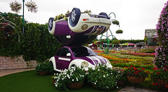 Back to back (Irina.yaNeya) Tags: dubai uae emirates miraclegarden park flowers cars grass colors nature art dubái eau garden parque jardín flores coches césped naturaleza arte دبي‎‎ الامارات حديقة منتزه زهور سيارات عشب طبيعة فن дубаи оаэ эмираты парк сад цветы машины трава природа искусство