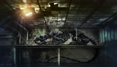 Usine Skeleton (Söckchen) Tags: urbex urbanexploration lostplaces abandoned marode verlassen dassoeckchen