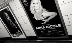 Diversity (carrot_cherries) Tags: black white tube poster anna nicole