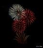Feathers (Lee1885) Tags: fireworks night dark newbrighton wirral bonfirenight