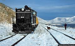 Union Pacific's First Diesel Electric Switch Engine (jamesbelmont) Tags: utah deercreekscenicrailroad emc nw2 unionpacific 1000 wallsburg passenger reservoir railway
