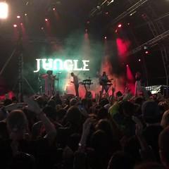 Jungle. (.ks.1.) Tags: clockenflap clockenflap2017 jungle4eva jungle