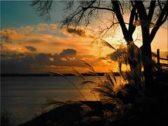 An afternoon in November on the Baltic Sea (Ostseetroll) Tags: deu deutschland geo:lat=5406573503 geo:lon=1077374697 geotagged ostseeküste schleswigholstein sierksdorf ostsee balticsea lübeckerbucht