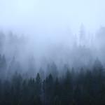 Nebel im Fichtelgebirge thumbnail
