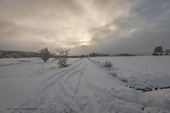 20171129001149 (koppomcolors) Tags: koppomcolors koppom värmland varmland sweden sverige scandinavia snö snow winter vinter