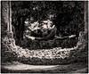 Leap (Bill  M) Tags: copyrightbillmartin2017 olympusomdem1 england niksilverefexpro sopwellnunnery stalbans copyright bill martin ballerina dancer hertfordshire places corrineswallow copyrightbillmartin