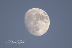 Evening Moon (david.horst.7) Tags: moon