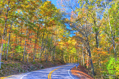 Autumn Tennessee Back Roads (J.L. Ramsaur Photography) Tags: jlrphotography nikond7200 nikon d7200 photography photo wartburgtn middletennessee morgancounty tennessee 2017 engineerswithcameras cumberlandplateau photographyforgod thesouth southernphotography screamofthephotographer ibeauty jlramsaurphotography photograph pic tennesseephotographer wartburgtennessee tennesseehdr hdr worldhdr hdraddicted bracketed photomatix hdrphotomatix hdrvillage hdrworlds hdrimaging hdrrighthererightnow fall autumn fallinthesouth tennesseefall fallcolors colorful red orange yellow brown fallseason autumncolors autumninthesouth fallleaves tennesseeautumn leaves autumnleaves leaf fallintennessee autumnintennessee backroads tennesseebackroads perspective perspectiverules vanishingpoint ruralsouth rural ruralamerica ruraltennessee ruralview road roadsideamerica nature outdoors god'sartwork nature'spaintbrush bluesky deepbluesky