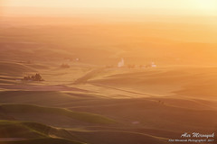 297A5985_1200 (Alex Mironyuk) Tags: 2017 abstract barn butte colfax landscape palouse phototour sunset tree washington waterfalls canola car field house panorama raps steptoe sunrise tractor wheat