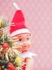Hide & Seek [49/52] (Jam-Gloom) Tags: olympus olympusuk olympusomdem5 olympusomd omdem5 uk 60mm28 60mmmacro28 60mmmacro macro 60mm 28 elvesbehavingbadly elves behavingbadly behaving badly elf baby naughtyelves christmas xmas elfontheshelf shelf shelfelf bokeh babyelf tistheseason winter kneehuggerelf week49 494952 4952 project522017 project52 52weeks 52weekproject