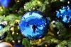 DSC_6980 (seustace2003) Tags: delft tu nederland holland pays bas paesi bassi an ísitír nollaig kerst christmas noel
