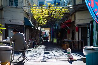 hatsune alley