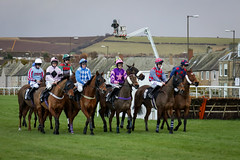Musselbrugh Races EPMG Nov 2017-8 (Philip Gillespie) Tags: musselburgh scotland edinburgh canon 5dsr races horse riders horses steeple chase hurdles jumps grass trees sky sea leaping jocky jockies mud dirt speed power helmets goggles finish straight flying brush town city clouds winter cold musles hooves hoofs blinkers colour red blue yellow orange green mono black white monochrome men women crowd audience thundering sun sunlight buildings houses people