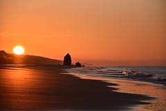 Gloria. (Nina Scotta) Tags: playa torredelloro amanecer sunrise light sea sky luce mare sole alba