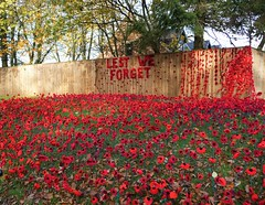 Lest We Forget (Martellotower) Tags: lest we forget war memorial poppies knitted nunthorpe