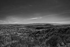 Boquillas Canyon BW