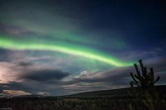 Northern Lights - Iceland (Toine B.) Tags: northern light aurora borealis aurore boreale sky astro astrophotography ciel nuit night iceland islande paysage landscape nikon d750 nikkor 20mm f35