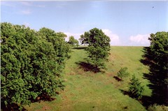 (vladdddd) Tags: hills landscape analogphoto