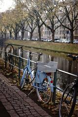 bike@Kö, Düsseldorf 22 (Amselchen) Tags: bicycle trees water reflection season autumn fall light bokeh blur dof depthoffield sony a7 alpha7 sonyilce7 zeiss carlzeiss sonnart1855 sonnar5518za fe55mmf18za