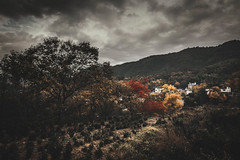 Detached autumn colors from complications (Digging Dog) Tags: landscape autumn dark fall red yellow village china chinese tachuan anhui surreal lowkey