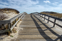 """Boardwalk to the Sea"" (Photography by Sharon Farrell) Tags: ibsp islandbeachstatepark islandbeachstateparknewjersey barrierisland islandbeach atlanticcoastline seasidepark seasideparknewjersey barnegatpeninsula berkeleytownship oceancountynewjersey islandbeachnorthernnaturalarea boardwalk woodenpath pathtothesea"