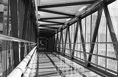 The Bridge (DuncanGreenhill) Tags: pentax film mesuper 50mmf14 nationlooking4light phonar phonarnation ilford xp2 pentaxart xp2s