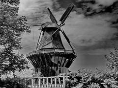 Potsdam: Sanssouci Old Windmill (gerard eder) Tags: world travel reise europa europe germany deutschland alemania berlin potsdam windmill bw blackandwhite blackwhite outdoor park parque jardines garden gardens garten molino windmühle sw sanssouci