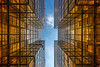 Gold (- Etude -) Tags: gold hongkong architecture buildings sony a7ii abstract