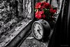 Abandoned (sw2018) Tags: urban house abandoned photoshop truck dexign art colour blend paint red blue green tamron stevewilkinson old clock time flowers